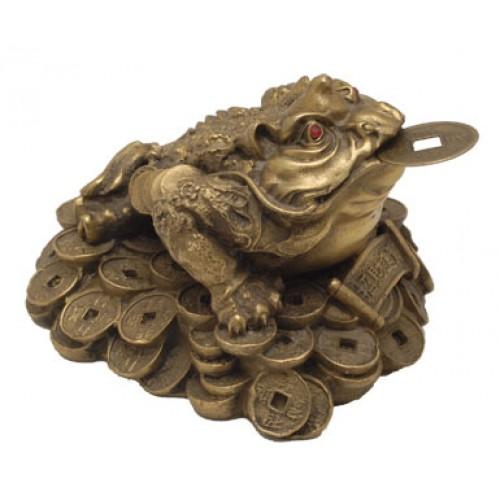 Βάτραχος με νόμισμα /μεγάλος