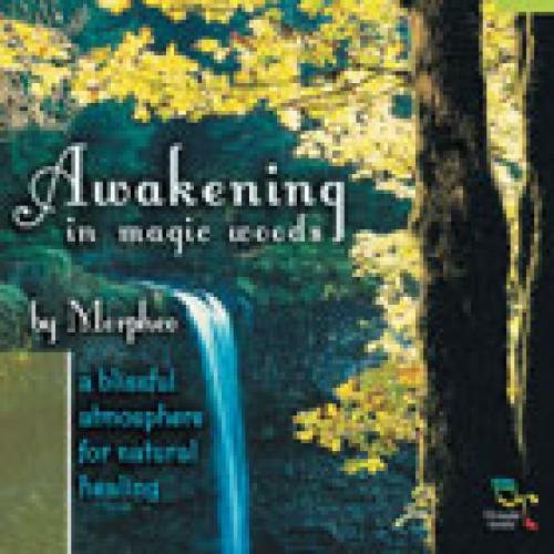 Awakening In Magic Woods