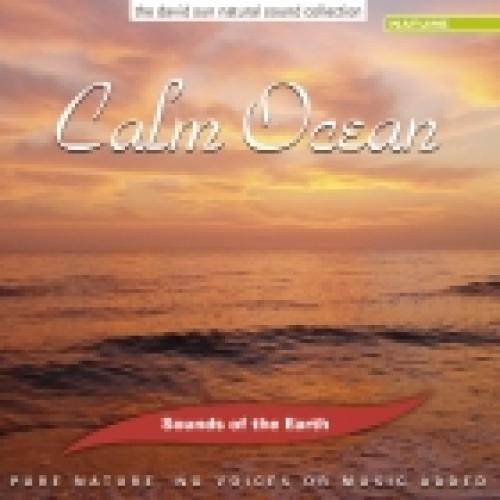 Calm Ocean